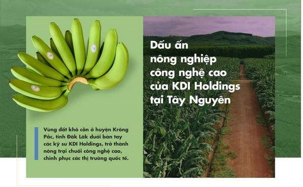 KDI Holdings 2