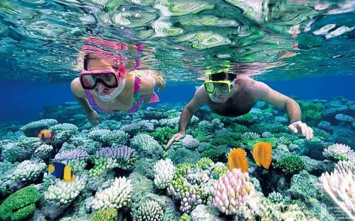 Công viên san hô Vạn San Đảo Vega City - Linh khí biển cả