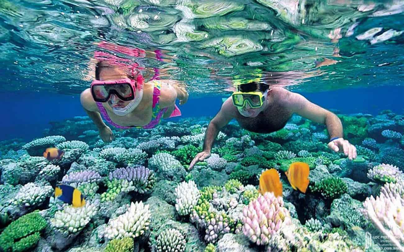 công viên san hô vạn san đảo